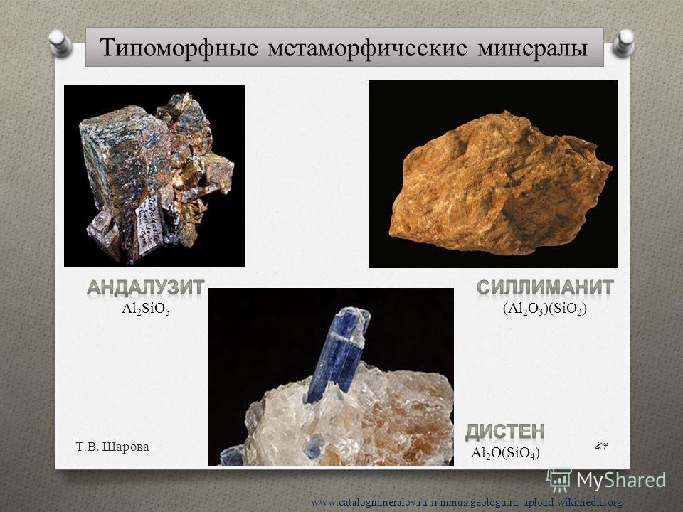 Т. В. Шарова 24 www.catalogmineralov.ru и mmus.geologu.ru upload wikimedia.org Типоморфные метаморфические минералы
