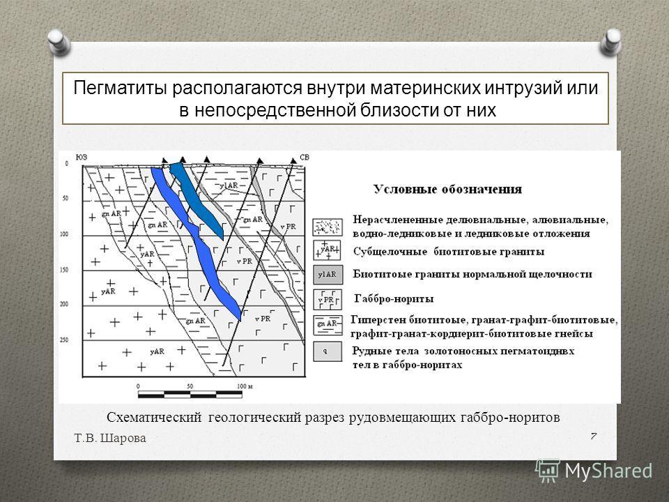 Т. В. Шарова 7 Пегматиты располагаются внутри материнских интрузий или в непосредственной близости от них Схематический геологический разрез рудовмещающих габбро-норитов