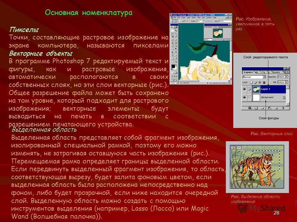 28 Основная номенклатура Пикселы Точки, составляющие растровое изображение на экране компьютера, называются пикселами Векторные объекты В программе Photoshop 7 редактируемый текст и фигуры, как и растровые изображения, автоматически располагаются в с