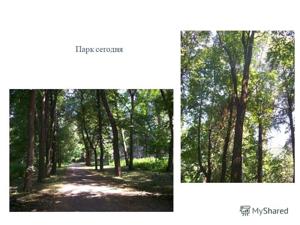 Парк сегодня