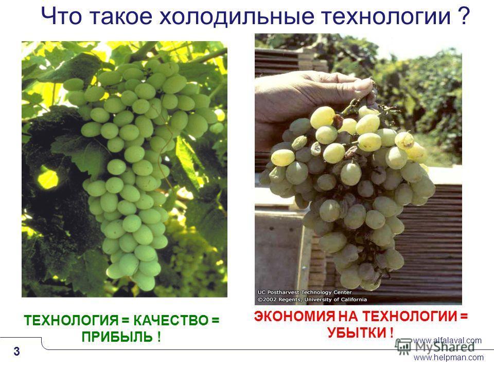 www.alfalaval.com www.helpman.com 3 Slide 3 Что такое холодильные технологии ? ТЕХНОЛОГИЯ = КАЧЕСТВО = ПРИБЫЛЬ ! ЭКОНОМИЯ НА ТЕХНОЛОГИИ = УБЫТКИ !