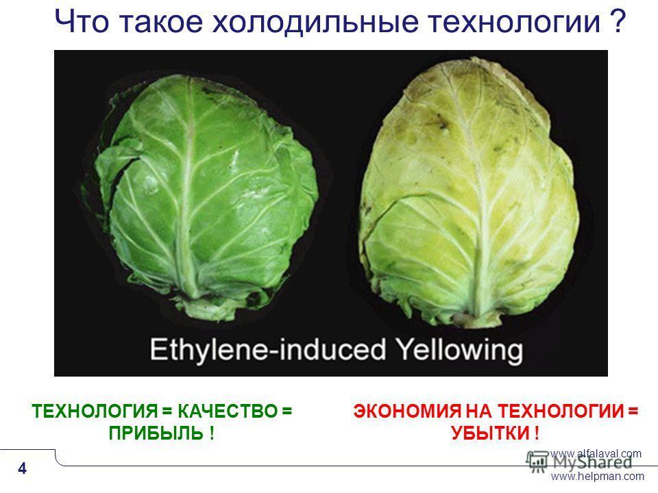 www.alfalaval.com www.helpman.com 4 Slide 4 Что такое холодильные технологии ? ЭКОНОМИЯ НА ТЕХНОЛОГИИ = УБЫТКИ ! ТЕХНОЛОГИЯ = КАЧЕСТВО = ПРИБЫЛЬ !