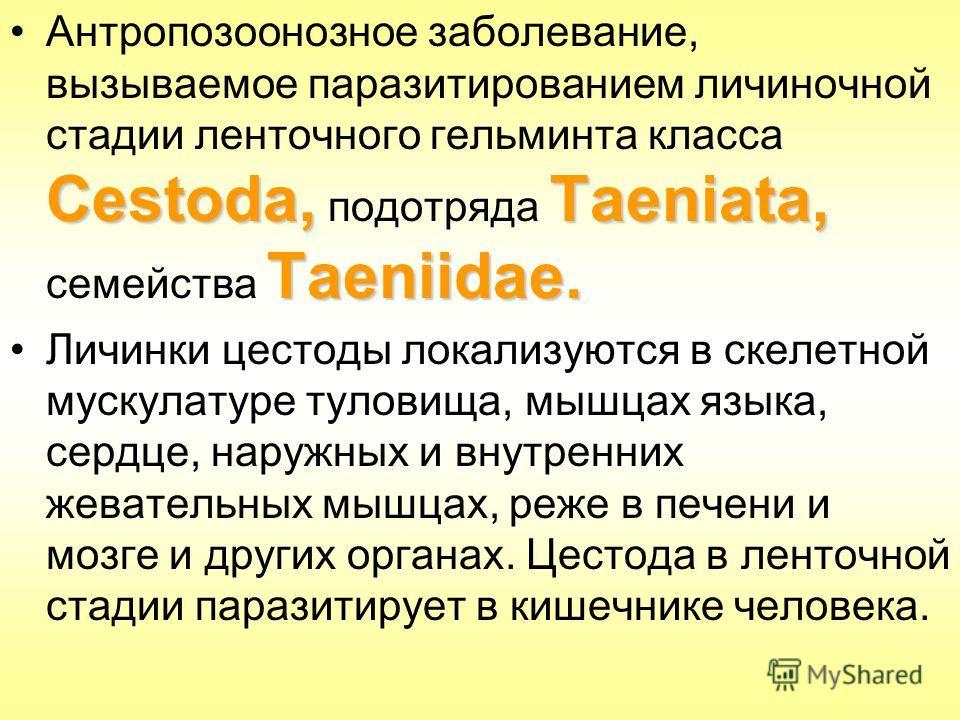 Cestoda,Taeniata, Taeniidae.Антропозоонозное заболевание, вызываемое паразитированием личиночной стадии ленточного гельминта класса Cestoda, подотряда Taeniata, семейства Taeniidae. Личинки цестоды локализуются в скелетной мускулатуре туловища, мышца
