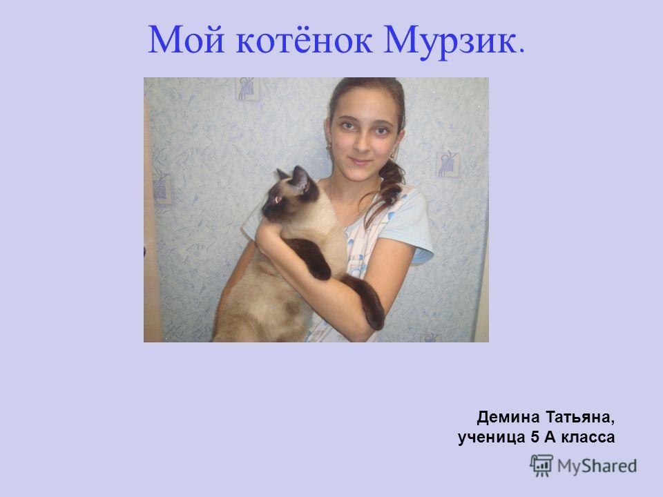 Мой котёнок Мурзик. Демина Татьяна, ученица 5 А класса