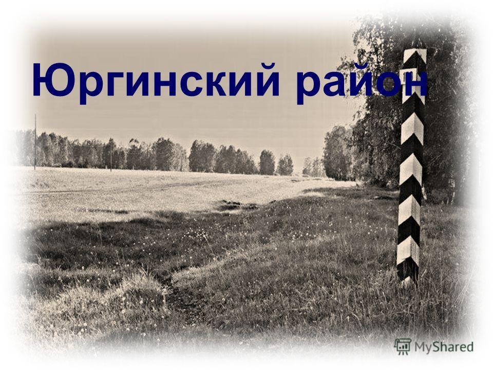 Юргинский район