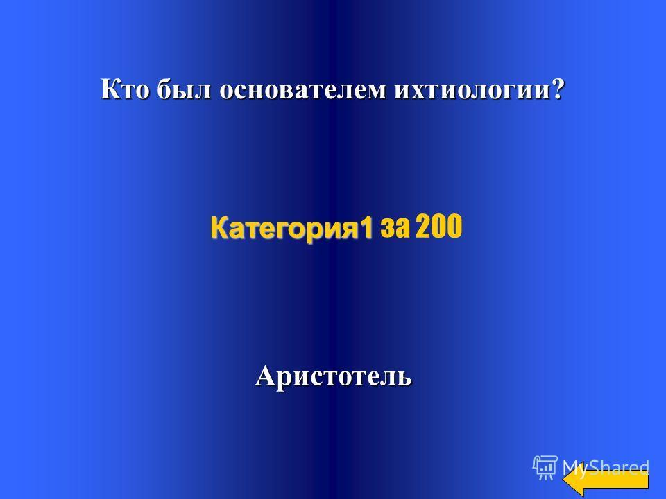 Что такое ихтиология? Ихтис- рыба Логос- учение Категория1 Категория1 за 100