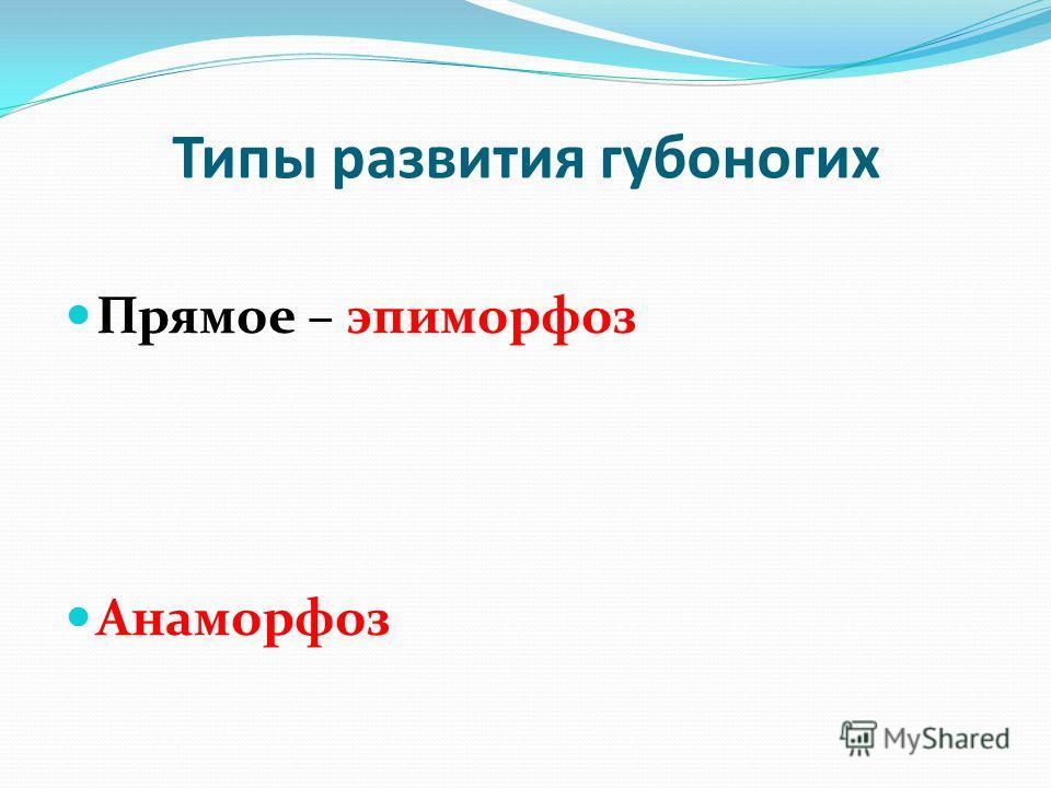 Типы развития губоногих Прямое – эпиморфоз Анаморфоз