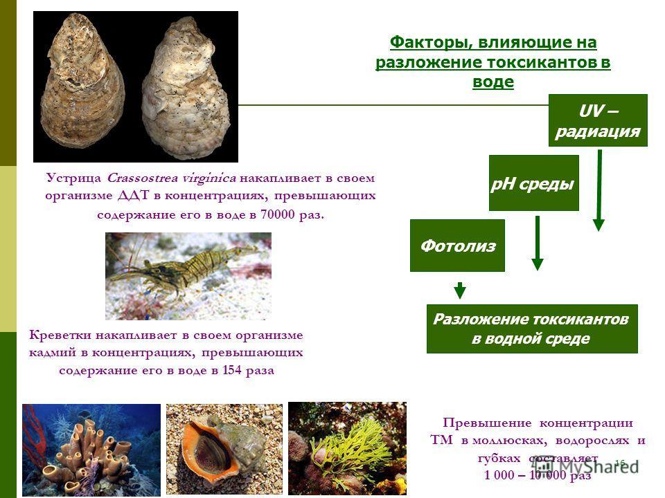 16 Устрица Crassostrea virginica накапливает в своем организме ДДТ в концентрациях, превышающих содержание его в воде в 70000 раз. Разложение токсикантов в водной среде Фотолиз рН среды UV – радиация Факторы, влияющие на разложение токсикантов в воде