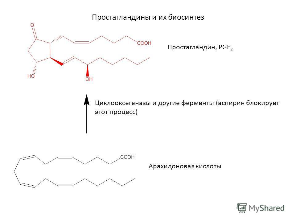 Простагландины и их биосинтез Простагландин, PGF 2 Циклооксегеназы и другие ферменты (аспирин блокирует этот процесс) Арахидоновая кислоты