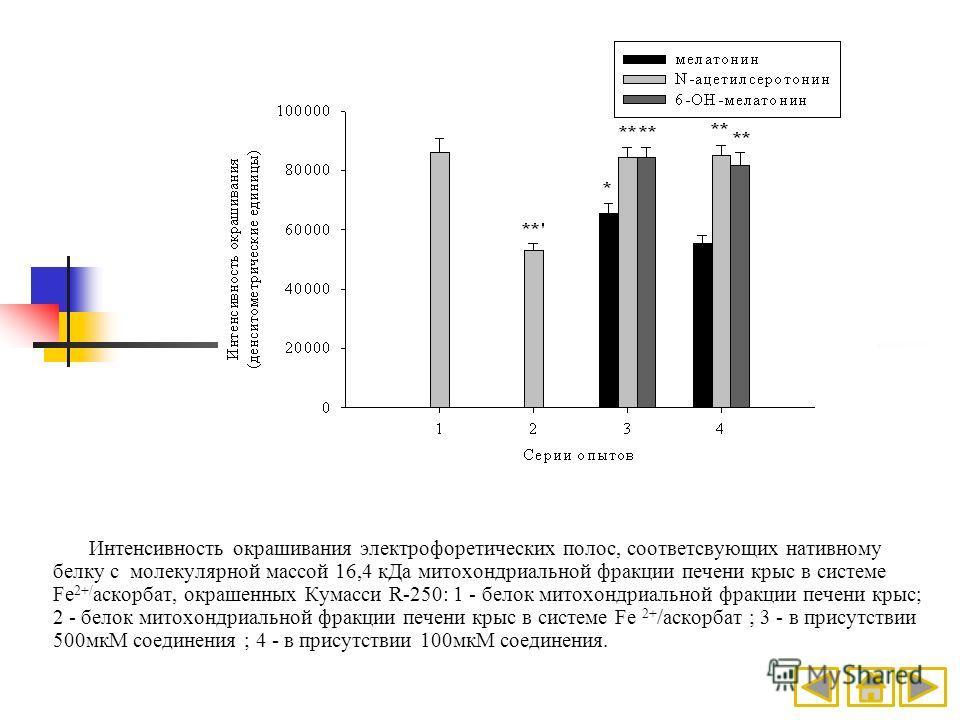 Интенсивность окрашивания электрофоретических полос, соответсвующих нативному белку с молекулярной массой 16,4 кДа митохондриальной фракции печени крыс в системе Fe 2+/ аскорбат, окрашенных Кумасси R-250: 1 - белок митохондриальной фракции печени кры