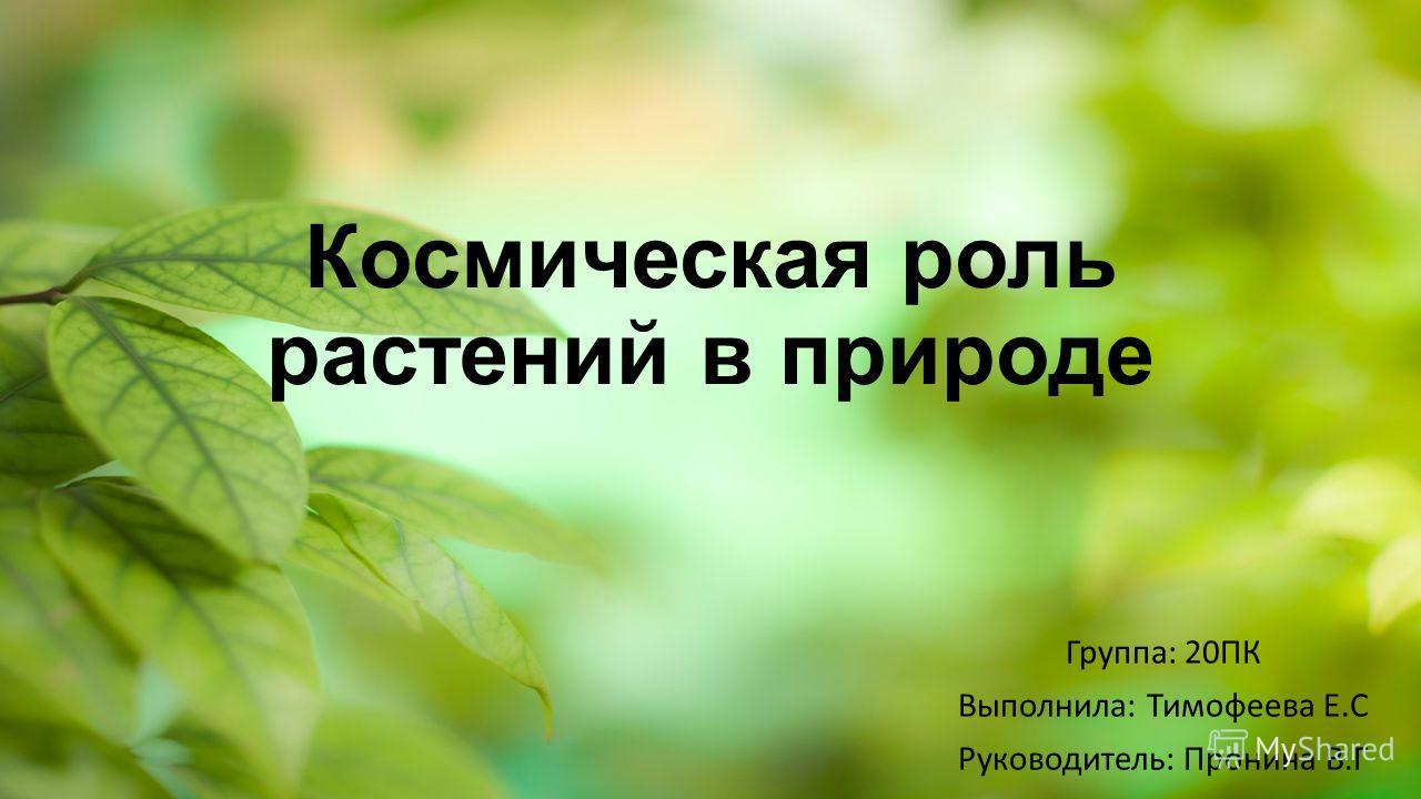 Космическая роль растений в природе Группа: 20ПК Выполнила: Тимофеева Е.С Руководитель: Пронина В.Г