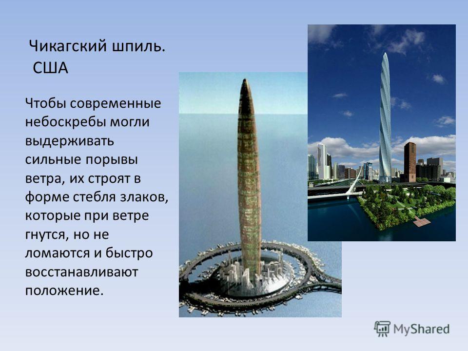 Чтобы современные небоскребы могли выдерживать сильные порывы ветра, их строят в форме стебля злаков, которые при ветре гнутся, но не ломаются и быстро восстанавливают положение. Чикагский шпиль. США