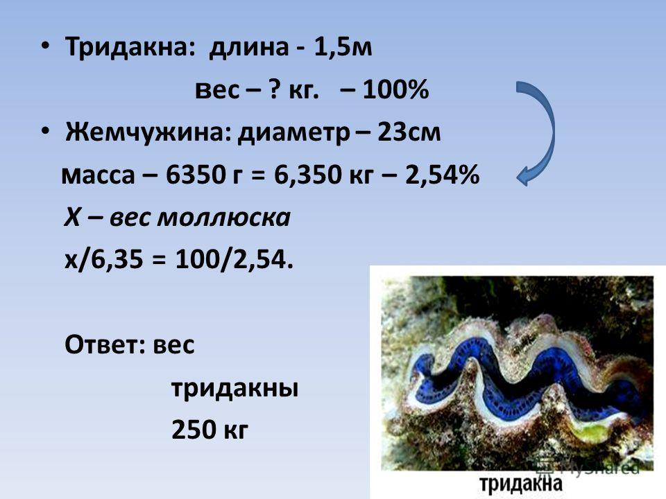 Тридакна: длина - 1,5м в ес – ? кг. – 100% Жемчужина: диаметр – 23см м асса – 6350 г = 6,350 кг – 2,54% Х – вес моллюска х/6,35 = 100/2,54. Ответ: вес тридакны 250 кг