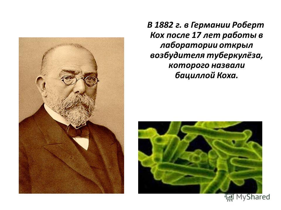 В 1882 г. в Германии Роберт Кох после 17 лет работы в лаборатории открыл возбудителя туберкулёза, которого назвали бациллой Коха.