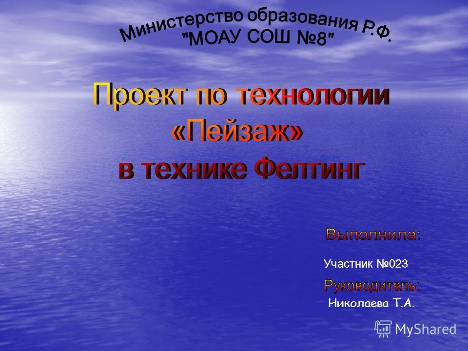 Участник 023 Николаева Т.А.