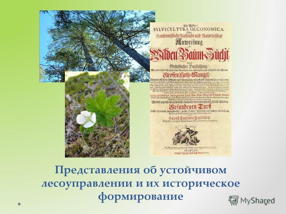 Представления об устойчивом лесоуправлении и их историческое формирование