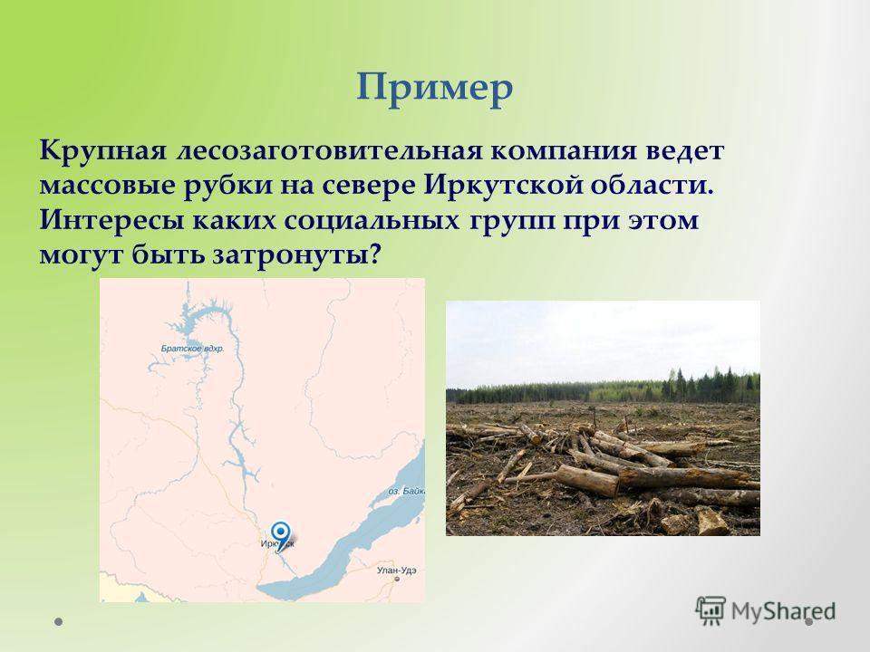 Пример Крупная лесозаготовительная компания ведет массовые рубки на севере Иркутской области. Интересы каких социальных групп при этом могут быть затронуты?
