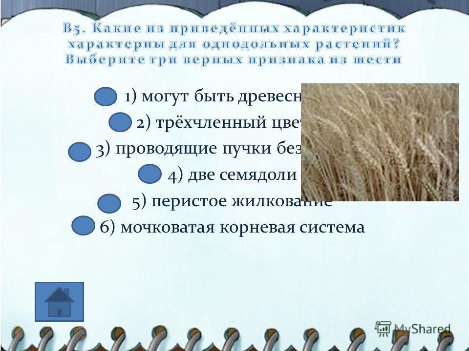 1) могут быть древесными 2) трёхчленный цветок 3) проводящие пучки без камбия 4) две семядоли 5) перистое жилкование 6) мочковатая корневая система