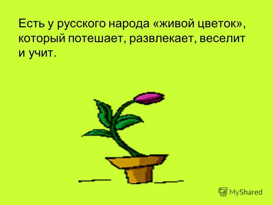 Есть у русского народа «живой цветок», который потешает, развлекает, веселит и учит.