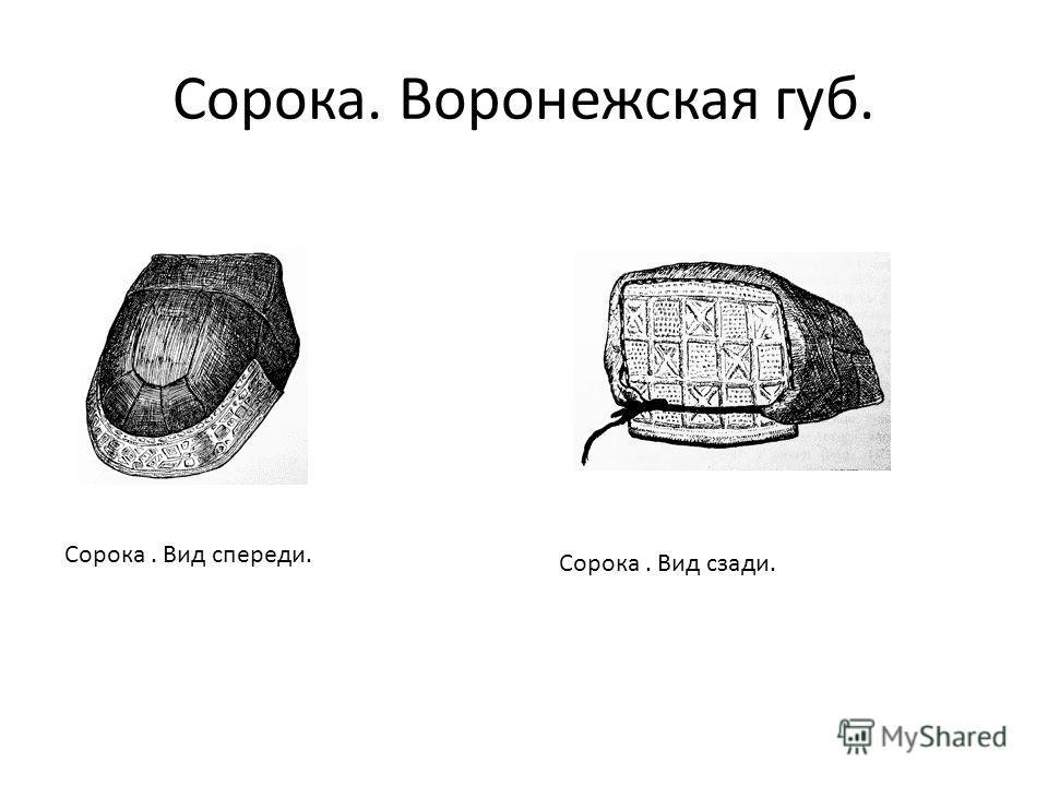 Сорока. Воронежская губ. Сорока. Вид спереди. Сорока. Вид сзади.
