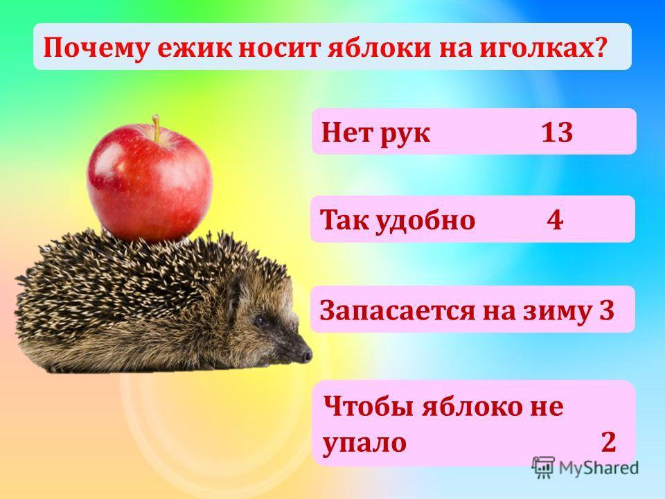 Почему ежик носит яблоки на иголках? Нет рук 13 Так удобно 4 Запасается на зиму 3 Чтобы яблоко не упало 2
