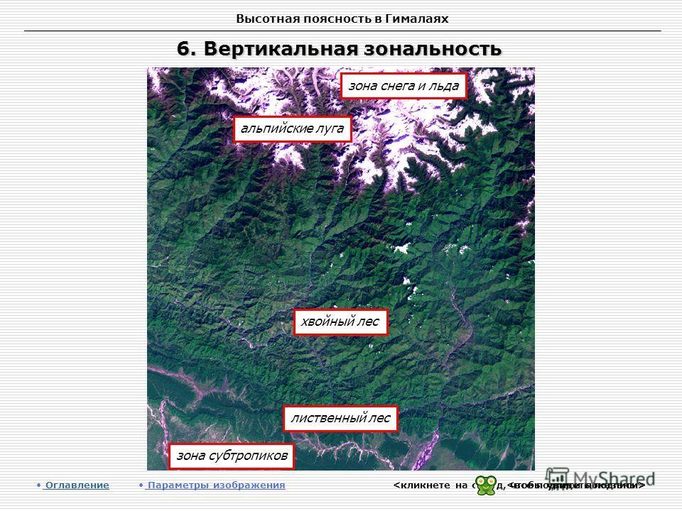 Высотная поясность в Гималаях 6. Вертикальная зональность Оглавление Оглавление Параметры изображения зона снега и льда альпийские луга лиственный лес хвойный лес зона субтропиков
