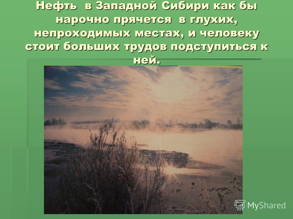 Нефть в Западной Сибири как бы нарочно прячется в глухих, непроходимых местах, и человеку стоит больших трудов подступиться к ней.