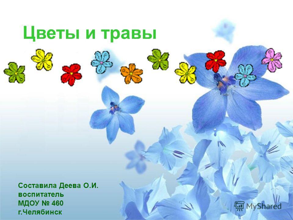 Цветы и травы Составила Деева О.И. воспитатель МДОУ 460 г.Челябинск