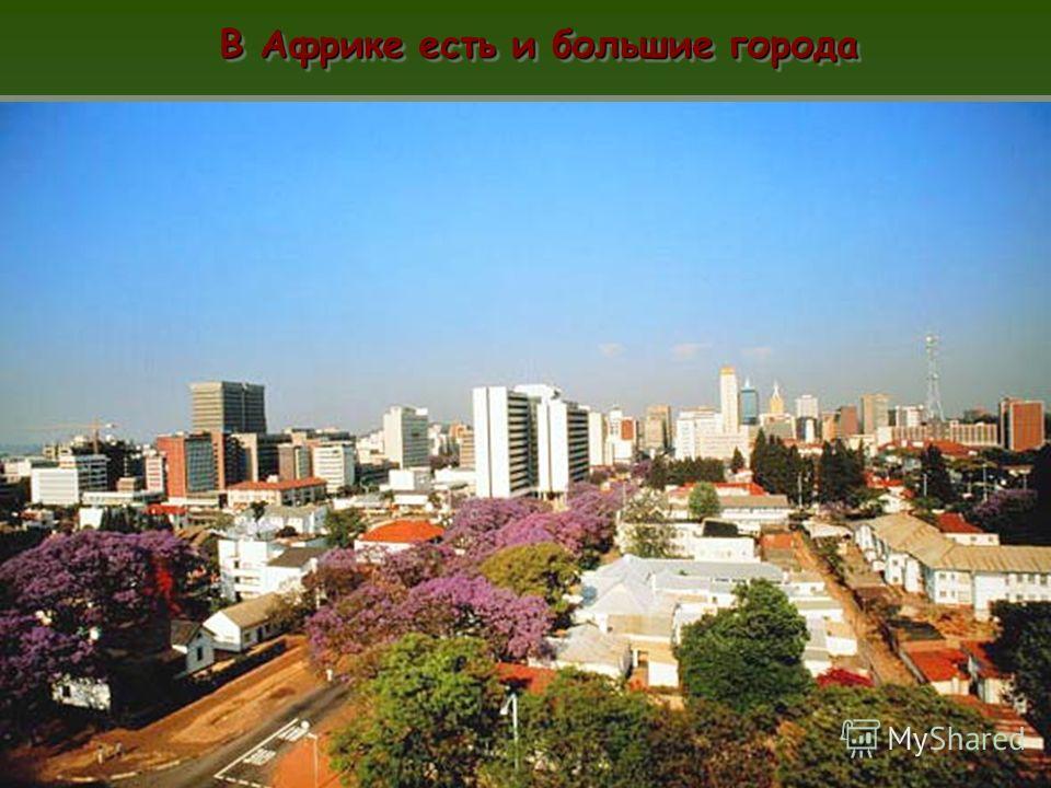 В Африке есть и большие города пп