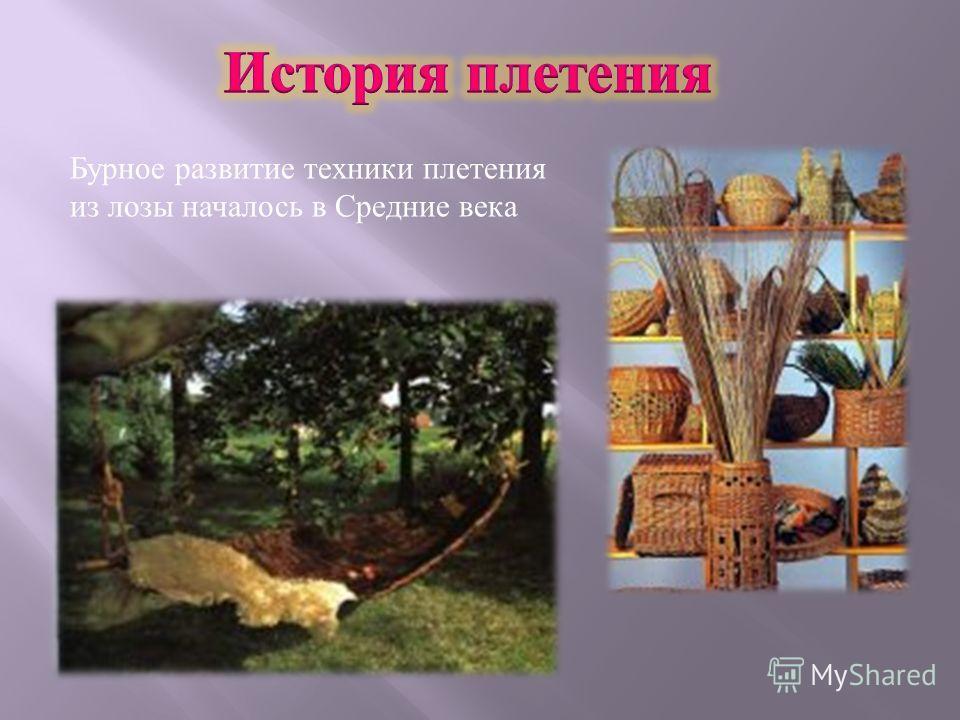 Бурное развитие техники плетения из лозы началось в Средние века