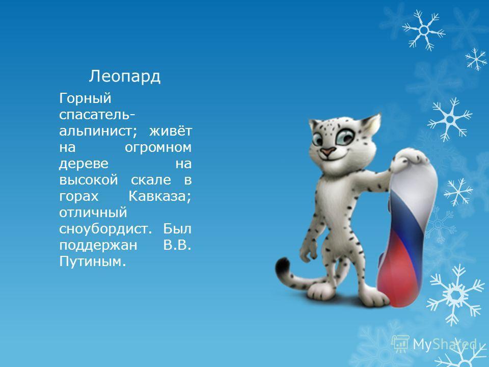 Леопард Горный спасатель- альпинист; живёт на огромном дереве на высокой скале в горах Кавказа; отличный сноубордист. Был поддержан В.В. Путиным.