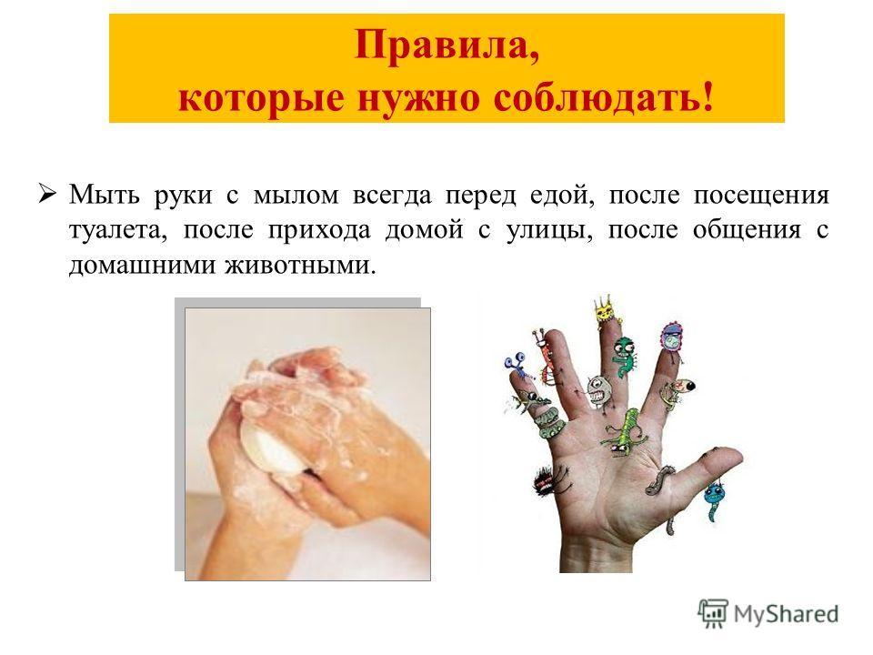 Правила, которые нужно соблюдать! Мыть руки с мылом всегда перед едой, после посещения туалета, после прихода домой с улицы, после общения с домашними животными.