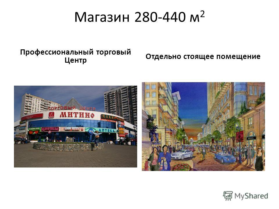Магазин 280-440 м 2 Профессиональный торговый Центр Отдельно стоящее помещение