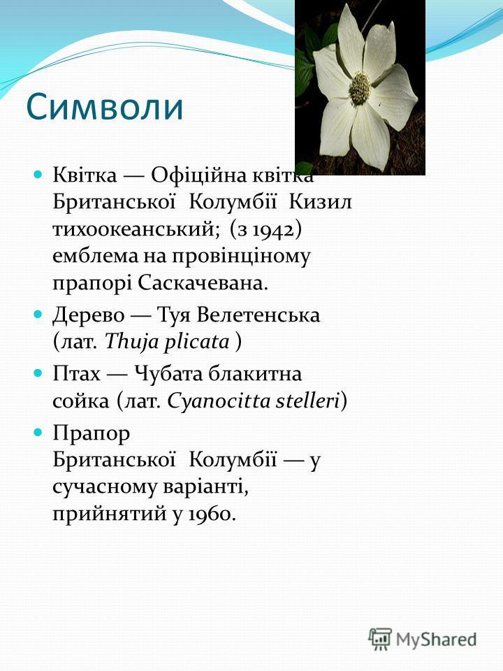 Символи Квітка Офіційна квітка Британської Колумбії Кизил тихоокеанський; (з 1942) емблема на провінціному прапорі Саскачеванa. Дерево Туя Велетенськa (лат. Thuja plicata ) Птах Чубата блакитна сойка (лат. Cyanocitta stelleri) Прапор Британської Колу