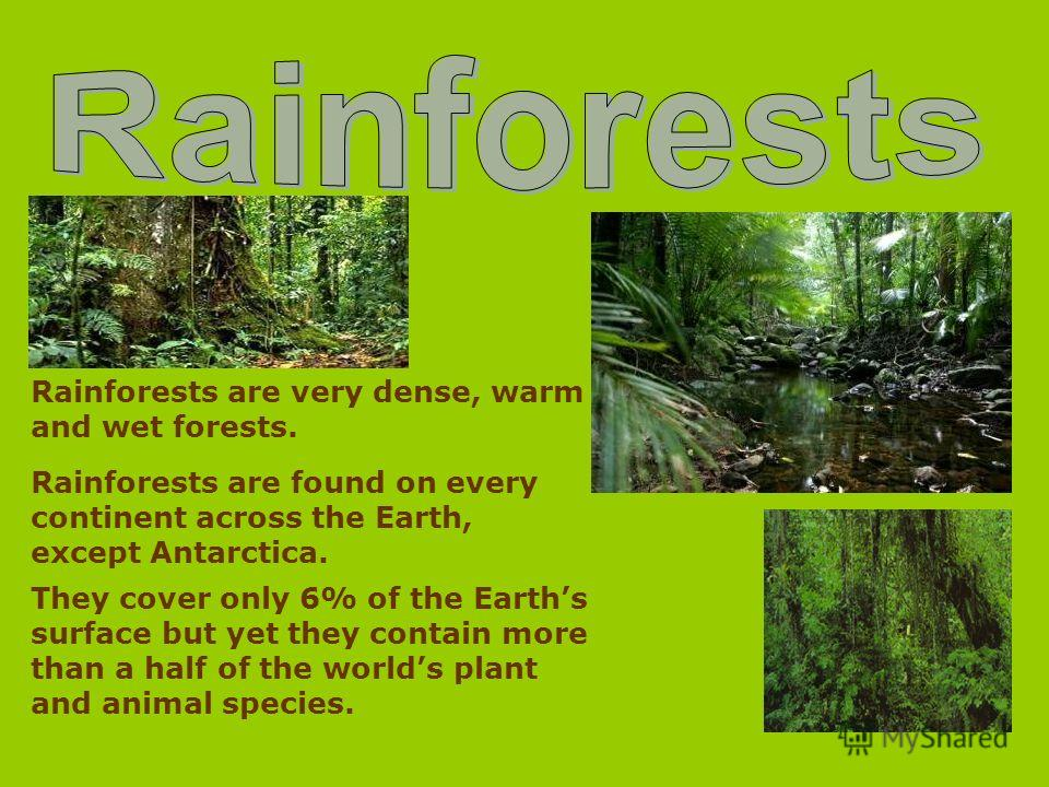 Rainforests are very dense, warm and wet forests. Rainforests are found on every continent across the Earth, except Antarctica. They cover only 6% of the Earths surface but yet they contain more than a half of the worlds plant and animal species.