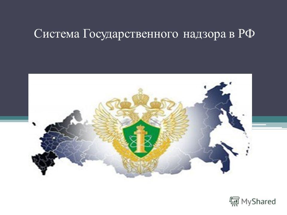 Система Государственного надзора в РФ