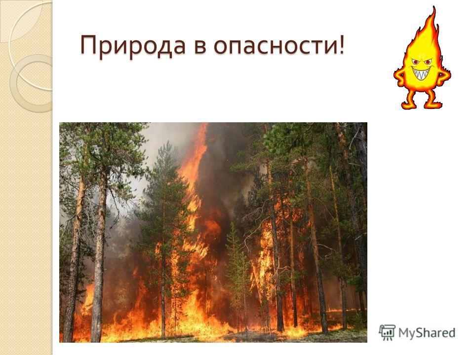 Природа в опасности !