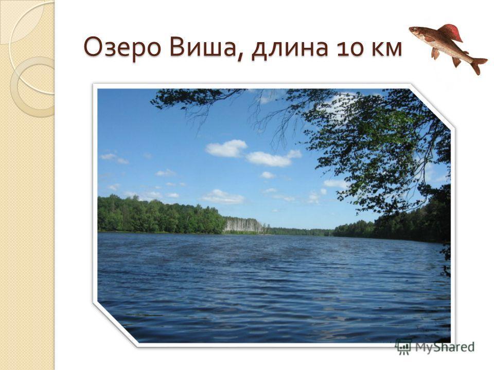 Озеро Виша, длина 10 км