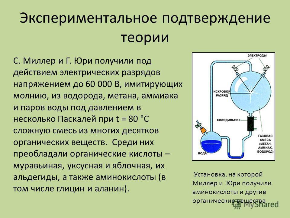 Экспериментальное подтверждение теории Установка, на которой Миллер и Юри получили аминокислоты и другие органические вещества С. Миллер и Г. Юри получили под действием электрических разрядов напряжением до 60 000 В, имитирующих молнию, из водорода,
