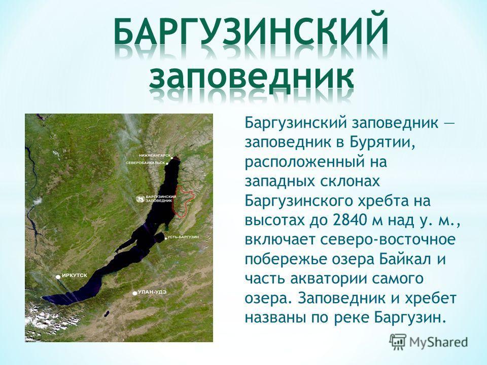 Баргузинский заповедник заповедник в Бурятии, расположенный на западных склонах Баргузинского хребта на высотах до 2840 м над у. м., включает северо-восточное побережье озера Байкал и часть акватории самого озера. Заповедник и хребет названы по реке