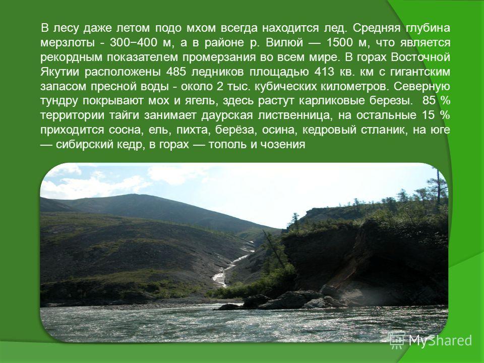 В лесу даже летом подо мхом всегда находится лед. Средняя глубина мерзлоты - 300400 м, а в районе р. Вилюй 1500 м, что является рекордным показателем промерзания во всем мире. В горах Восточной Якутии расположены 485 ледников площадью 413 кв. км с ги