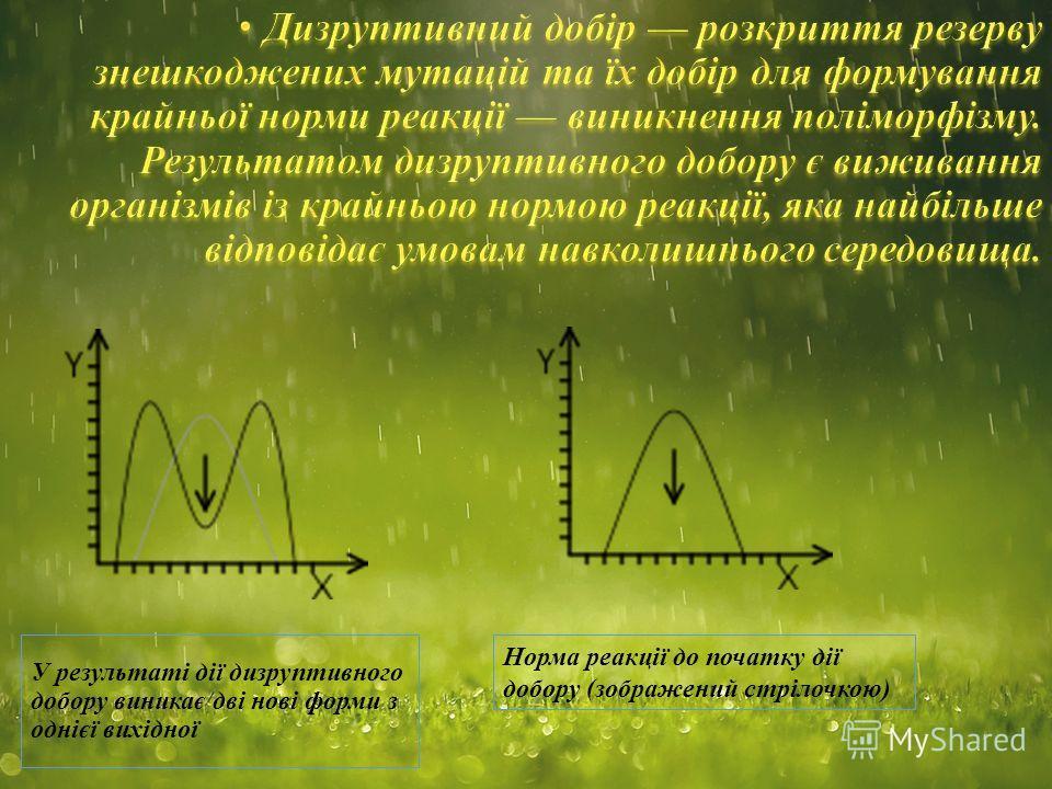 У результаті дії дизруптивного добору виникає дві нові форми з однієї вихідної Норма реакції до початку дії добору (зображений стрілочкою)