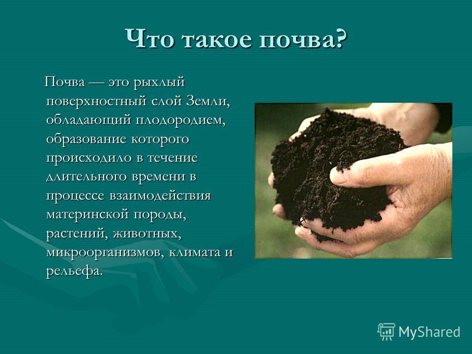 Что такое почва? Почва это рыхлый поверхностный слой Земли, обладающий плодородием, образование которого происходило в течение длительного времени в процессе взаимодействия материнской породы, растений, животных, микроорганизмов, климата и рельефа. П
