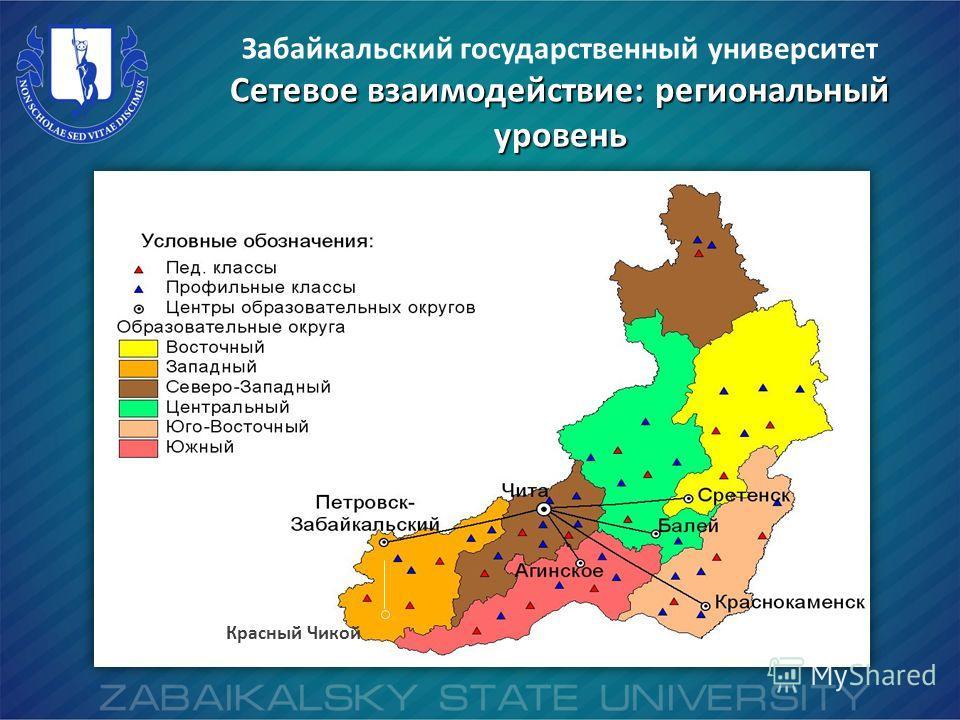 Красный Чикой Забайкальский государственный университет Сетевое взаимодействие: региональный уровень