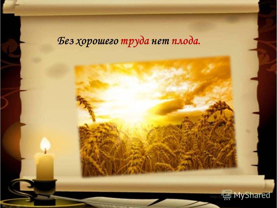 Без хорошего труда нет плода.