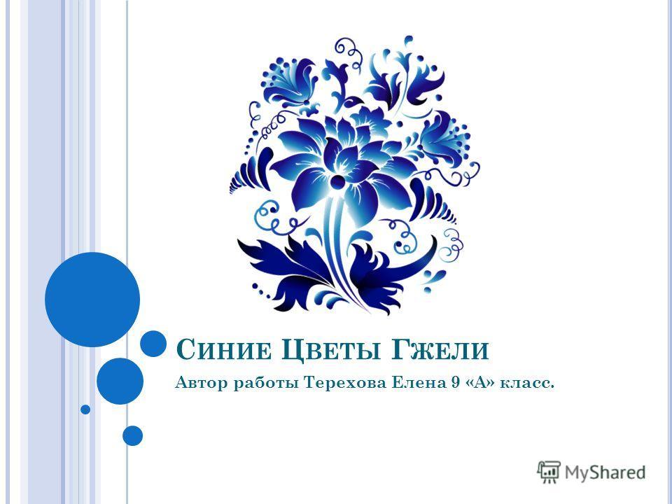 С ИНИЕ Ц ВЕТЫ Г ЖЕЛИ Автор работы Терехова Елена 9 «А» класс.