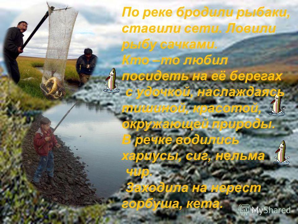 По реке бродили рыбаки, ставили сети. Ловили рыбу сачками. Кто –то любил посидеть на её берегах с удочкой, наслаждаясь тишиной, красотой, окружающей природы. В речке водились хариусы, сиг, нельма чир. Заходила на нерест горбуша, кета.