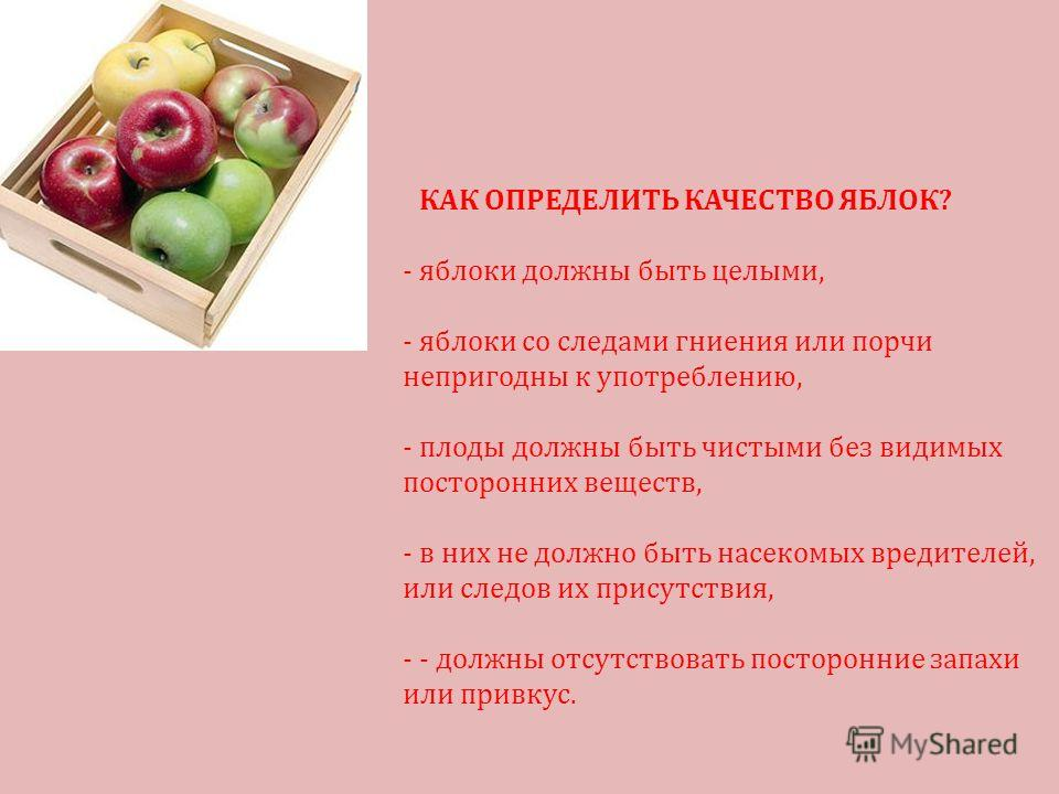 КАК ОПРЕДЕЛИТЬ КАЧЕСТВО ЯБЛОК? -яблоки должны быть целыми, -яблоки со следами гниения или порчи непригодны к употреблению, -плоды должны быть чистыми без видимых посторонних веществ, -в них не должно быть насекомых вредителей, или следов их присутств