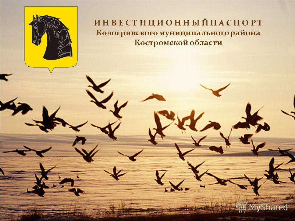 И Н В Е С Т И Ц И О Н Н Ы Й П А С П О Р Т Кологривского муниципального района Костромской области