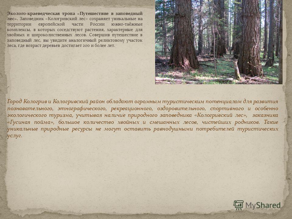 Эколого-краеведческая тропа «Путешествие в заповедный лес». Заповедник «Кологривский лес» сохраняет уникальные на территории европейской части России южно-таёжные комплексы, в которых соседствуют растения, характерные для хвойных и широколиственных л